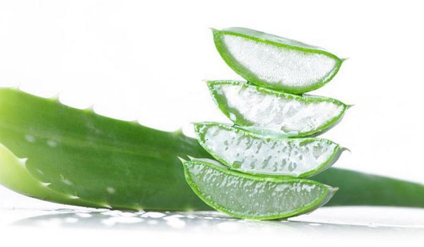 Aloe Vera - How to Get Rid of Milia