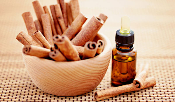 Cinnamon Oil - Home Remedies for Mosquito Bites