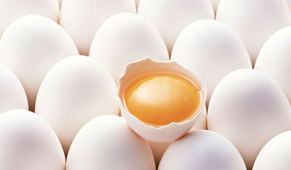 Egg - Home Remedies For Oily Skin