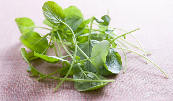 Watercress - How to Cleanse Your Body