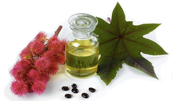 Castor Oil - Home Remedies for Loss of Smell and Taste