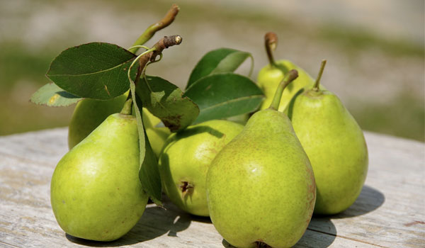 Pears - Home Remedies for Diverticulitis