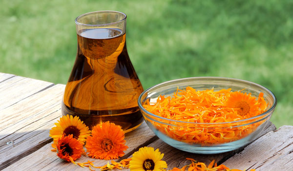 Wheat Germ Oil and Calendula Oil - Home Remedies for Stretch Marks