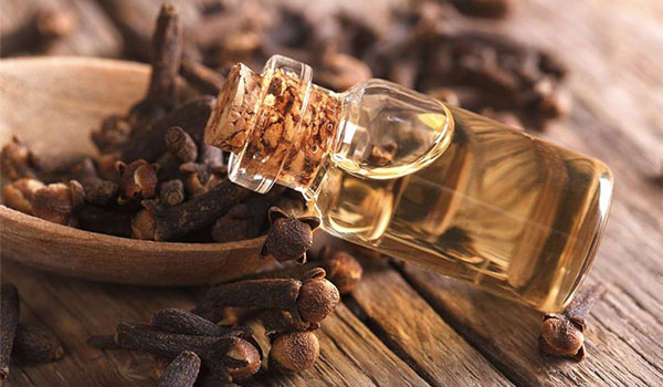 Clove Oil - Home Remedies for Ear Discharge