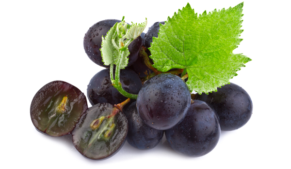 Grape Seeds - Home Remedies to Help You Conceive