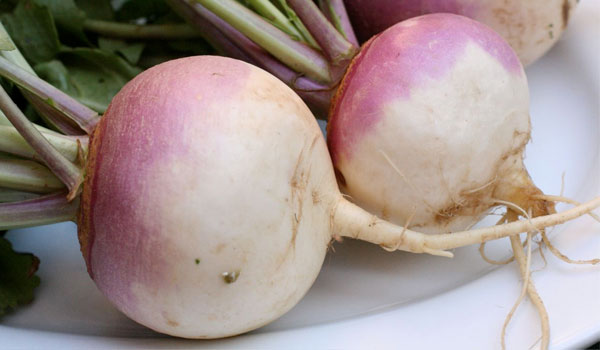 Turnip - Home Remedies for Body Odor