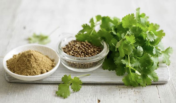 Coriander - Home Remedies for Blisters on Tongue