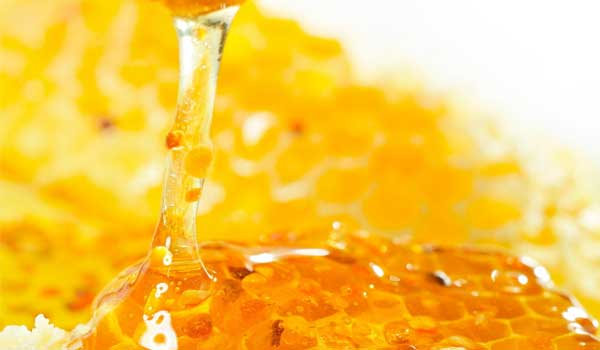 Honey - Home Remedies for Periodontitis
