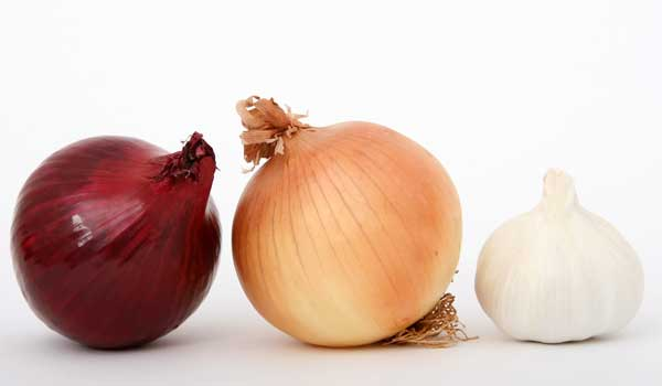 Onion - Home Remedies for Staph Infection