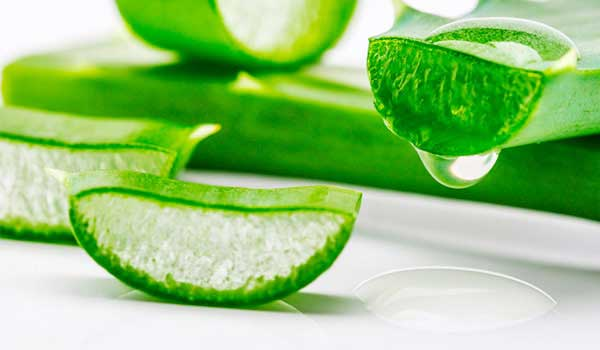 aloe-vera-home-remedies-for-oral-thrush