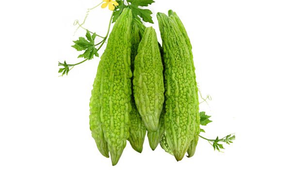 Bitter Gourd - Home Remedies for Diabetes