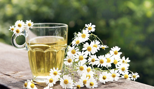 Chamomile tea - Home Remedies for Swollen Glands
