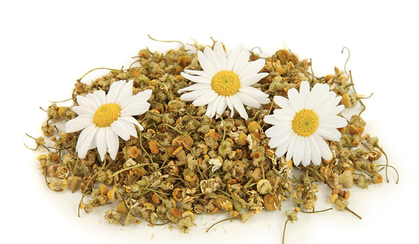 Chamomile - Home Remedies for Irritated Eyes