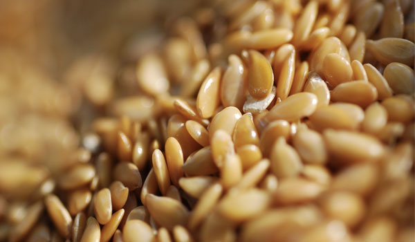 flax-seeds-home-remedies-for-oral-thrush