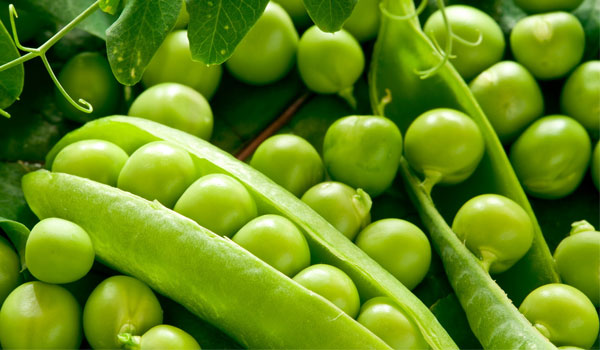 Green Pea - Home Remedies for Chickenpox