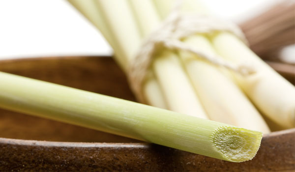 Lemongrass - Home Remedies for Toenail Fungus