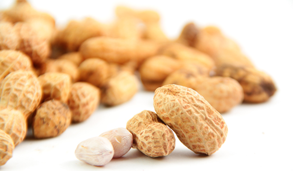 Peanut - How To Prevent Colon Cancer