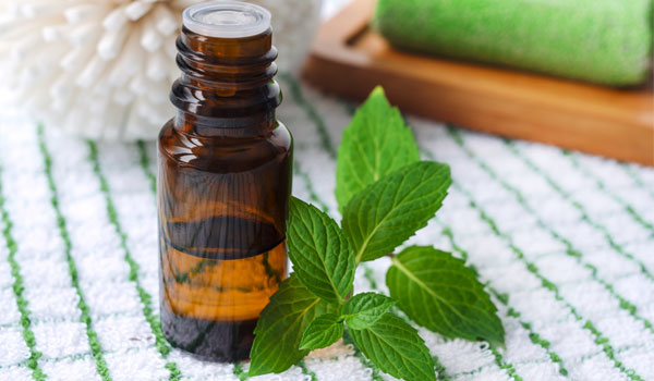 Peppermint Oil - Home Remedies for Dry Feet