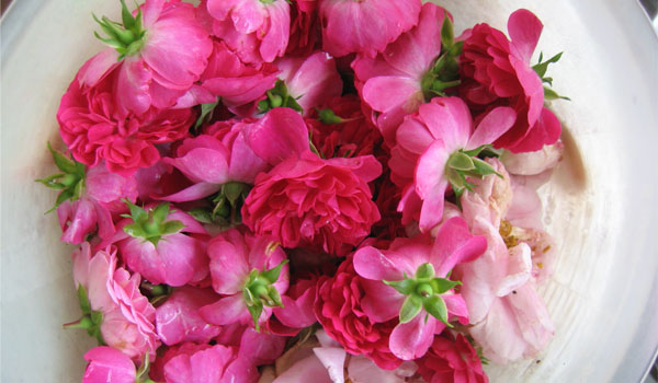 Rose Water - Home Remedies for Red Eyes