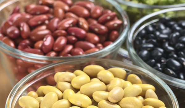 Beans Legumes - How to Treat Gargrene