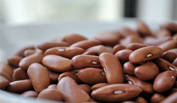 Beans - How to Reduce Triglyceride Levels