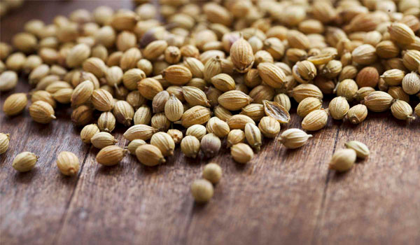 Coriander Seeds - Home Remedies for Fever