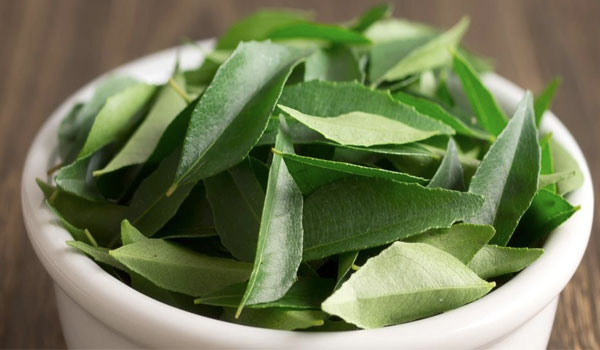 Curry leaves - Home Remedies for Morning Sickness