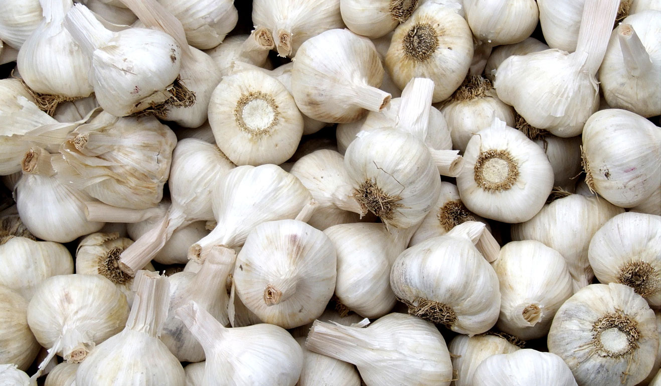 Garlic – The World's  Healthiest Food