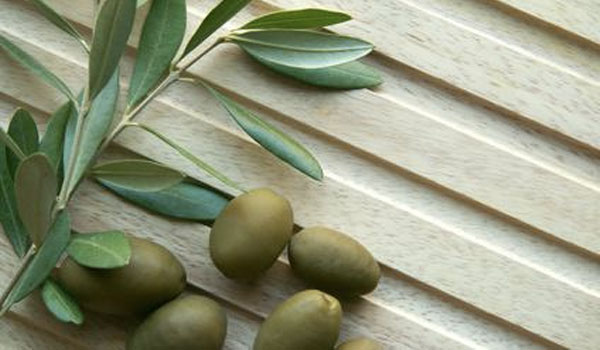 Olive - How to Reduce Triglyceride Levels
