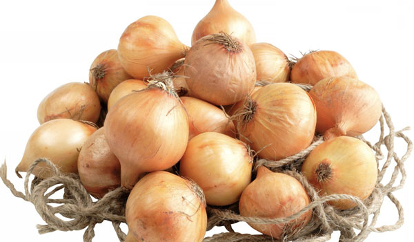 Onion good for immunity - Top 10 Health Benefits of Onion