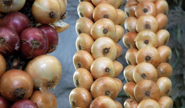 Onion prevents cancer - Top 10 Health Benefits of Onion