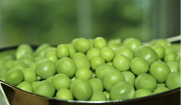 Peas - How to Reduce Triglyceride Levels