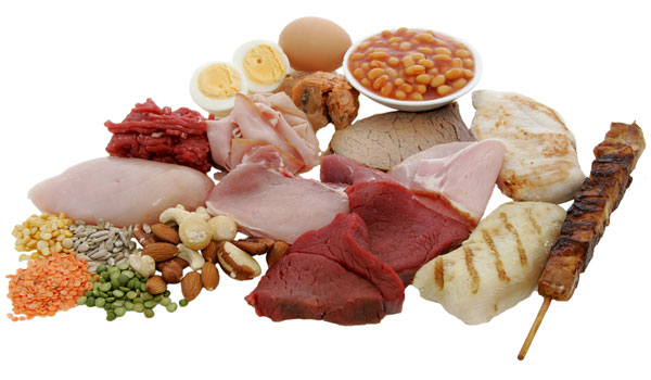 Protein - How to Keep Your Bone Strong and Healthy