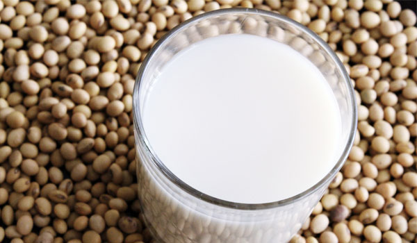 Soybeans good for digestive health