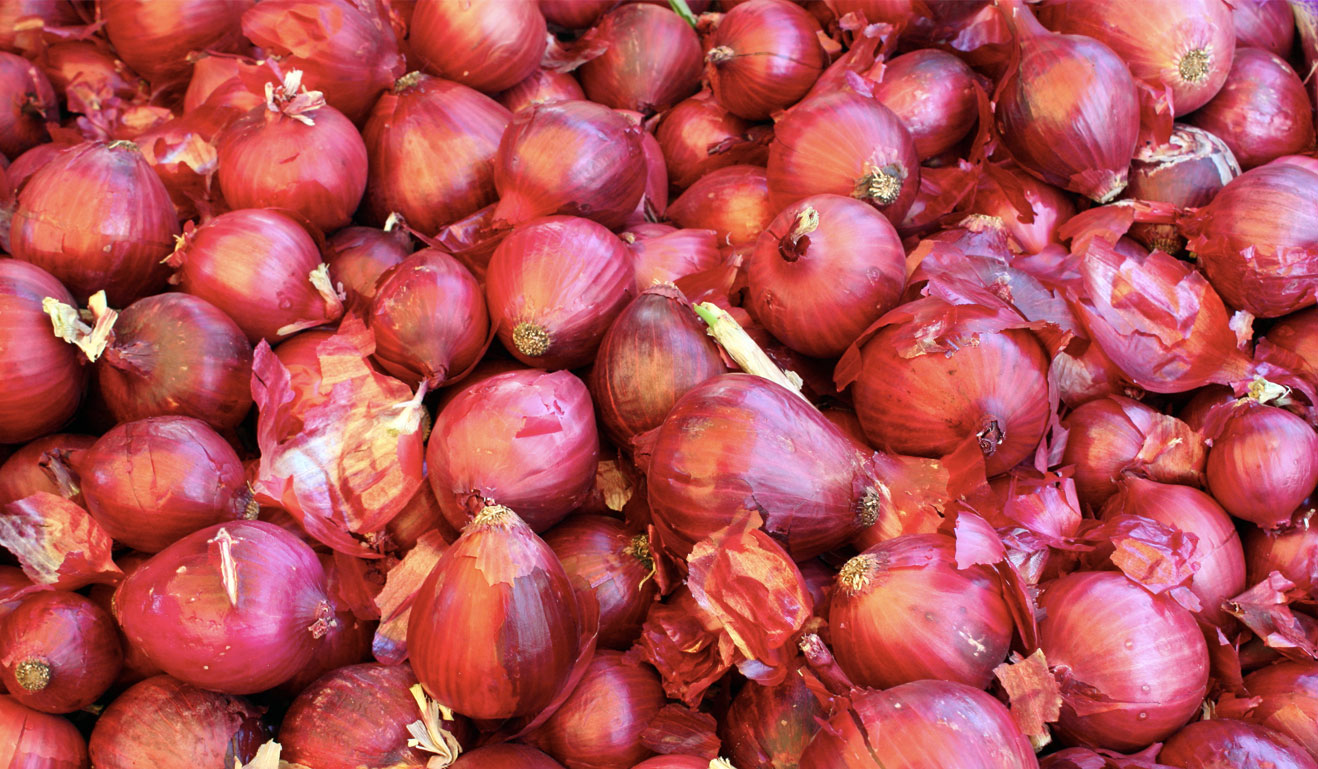 Top 10 Health Benefits of Onion