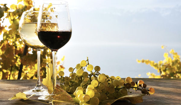 Wine rich in Omega-3 fatty acids - 13 Reasons to Drink a Glass of Wine Every Day