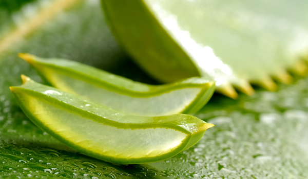 Aloe Vera - How To Get Chubby Cheeks