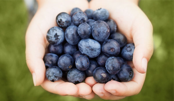 Blueberries - Top SuperFoods for Inflammation
