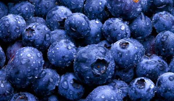 Blueberry - What To Eat After Workout