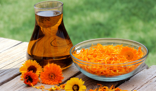 Calendula Oil - How To Get Rid Of Rash Under Breast