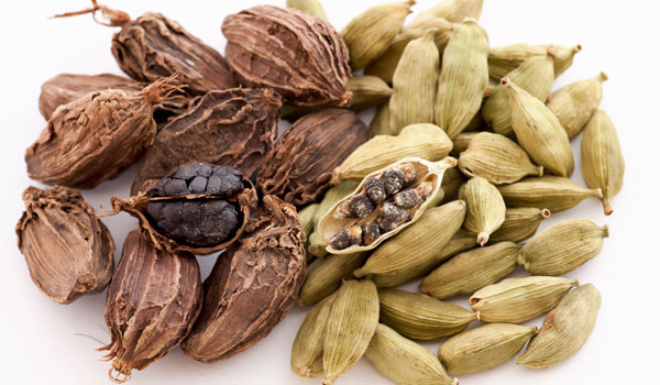 Cardamom - Home Remedies for Hiccups
