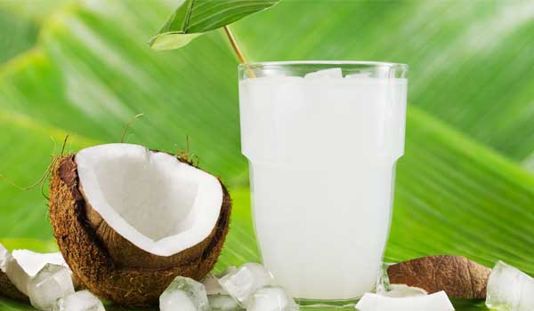 Coconut Water - Home Remedies for Typhoid Fever