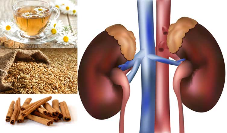Home Remedies to Reduce High Creatinine Levels