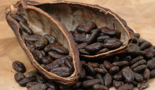 Dark Chocolate - Top Superfoods for The Brain
