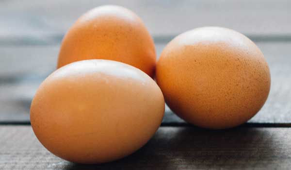 Bones - Health Benefits of Eggs