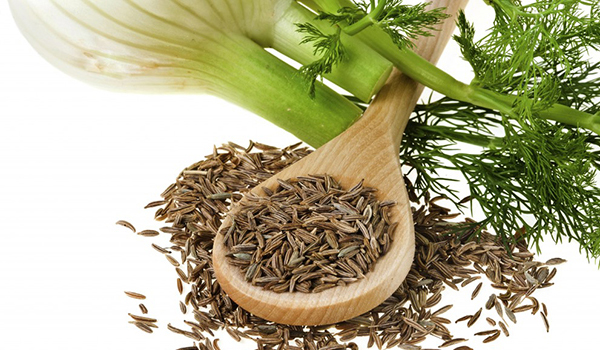 Fennel - Home Remedies for Edema