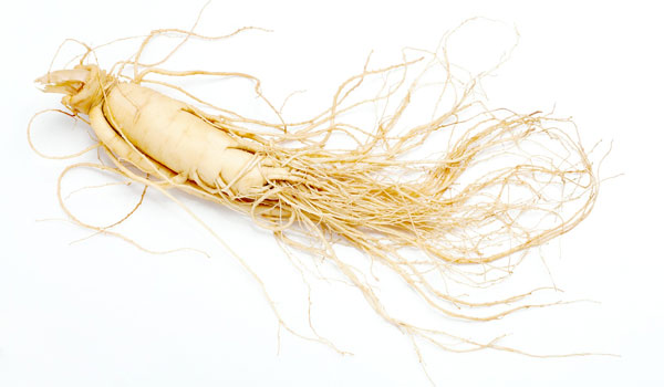 Ginseng - Home Remedies for Panic Attacks