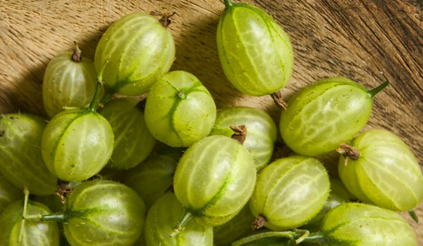 Gooseberry - Home Remedies for Jaundice
