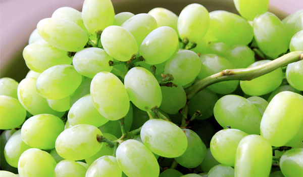 Grapes improve kidney health - Health Benefits of Grapes