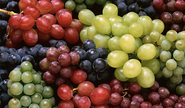 Grapes prevent cancer - Health Benefits of Grapes